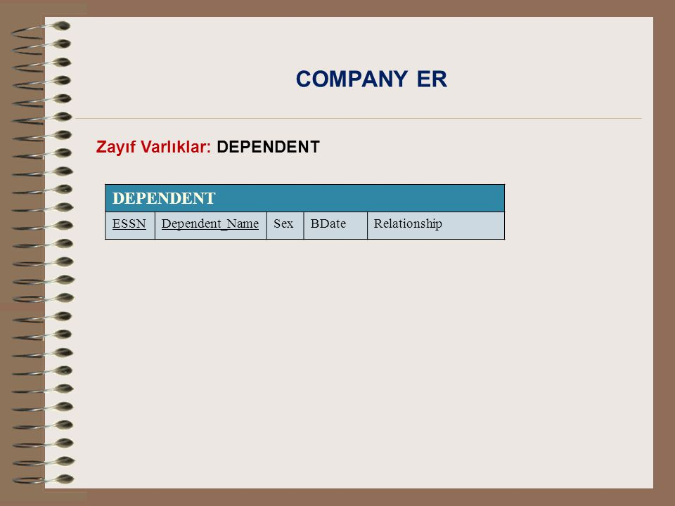 COMPANY ER DEPENDENT Zayıf Varlıklar: DEPENDENT ESSN Dependent_Name