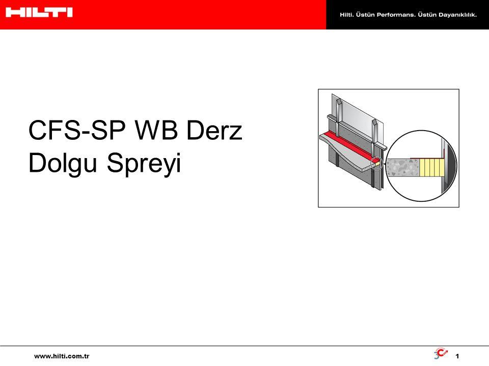 CFS-SP WB Derz Dolgu Spreyi
