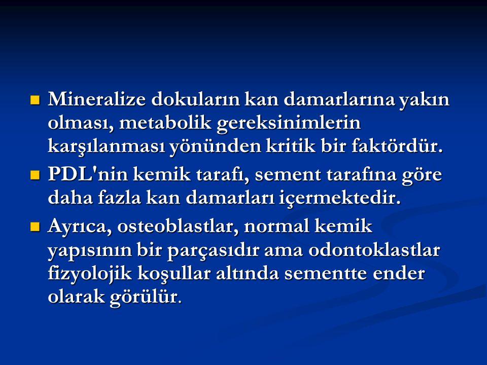 Mineralize dokuların kan damarlarına yakın olması, metabolik gereksinimlerin karşılanması yönünden kritik bir faktördür.