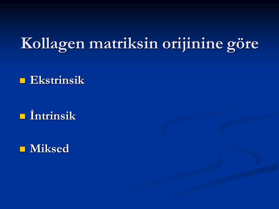 Kollagen matriksin orijinine göre