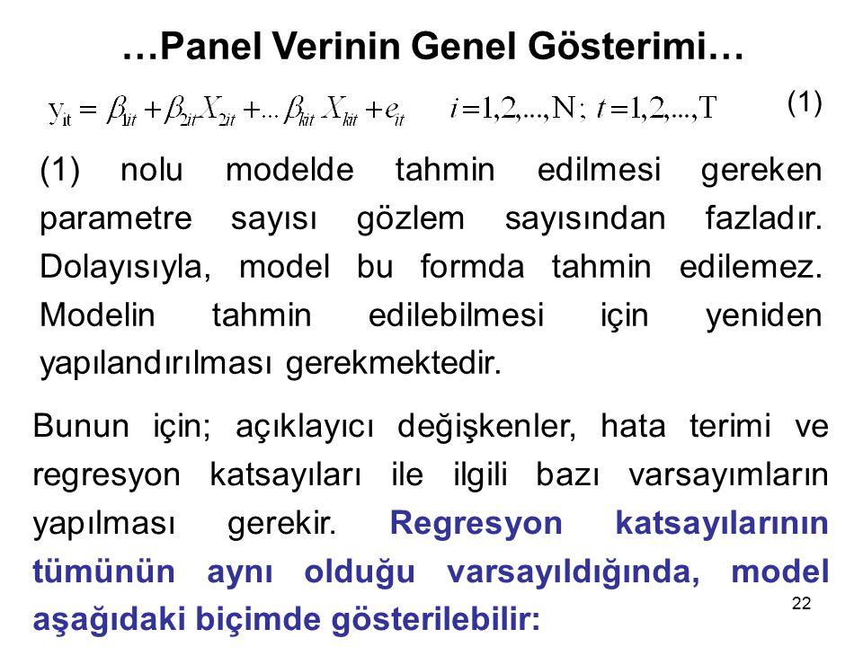 …Panel Verinin Genel Gösterimi…