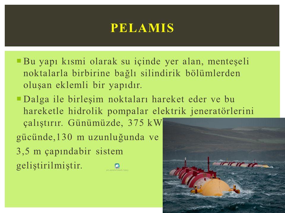 PELAMIS Bu yapı kısmi olarak su içinde yer alan, menteşeli noktalarla birbirine bağlı silindirik bölümlerden oluşan eklemli bir yapıdır.