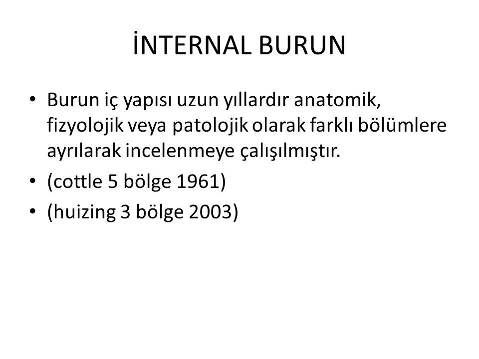 İNTERNAL BURUN Burun iç yapısı uzun yıllardır anatomik, fizyolojik veya patolojik olarak farklı bölümlere ayrılarak incelenmeye çalışılmıştır.