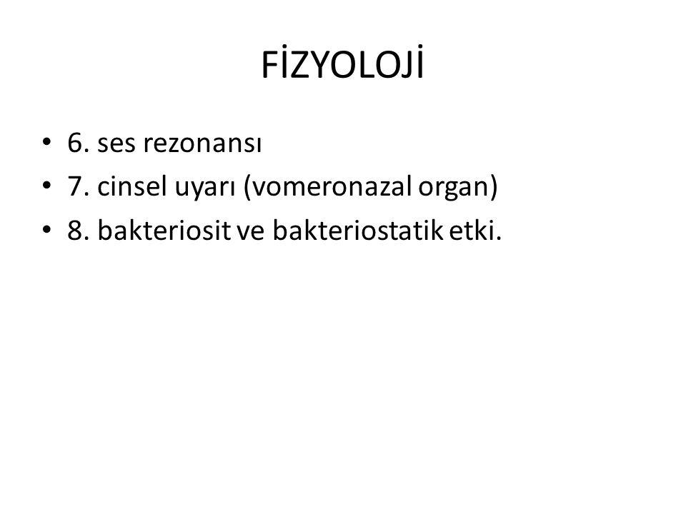 FİZYOLOJİ 6. ses rezonansı 7. cinsel uyarı (vomeronazal organ)