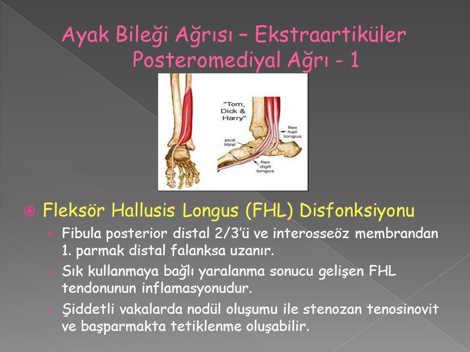 Ayak Bileği Ağrısı – Ekstraartiküler Posteromediyal Ağrı - 1