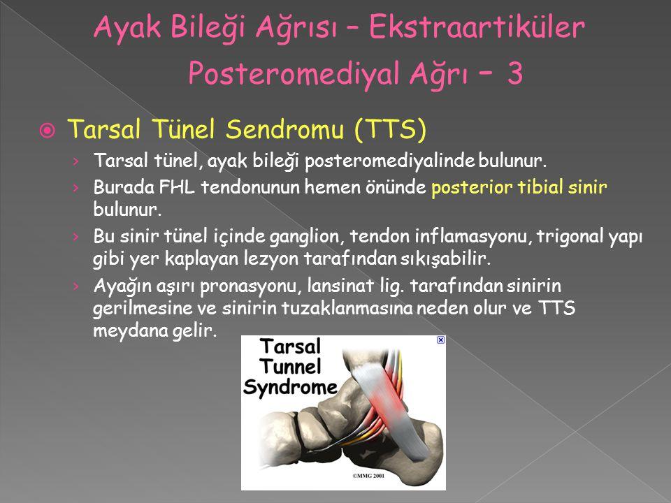 Ayak Bileği Ağrısı – Ekstraartiküler Posteromediyal Ağrı - 3