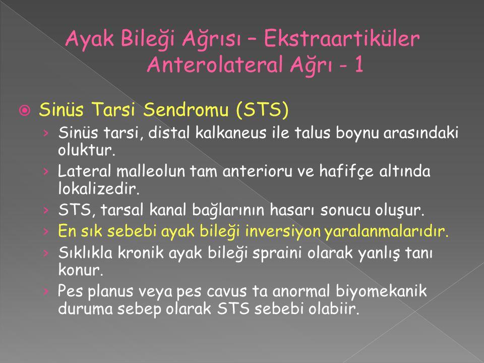 Ayak Bileği Ağrısı – Ekstraartiküler Anterolateral Ağrı - 1
