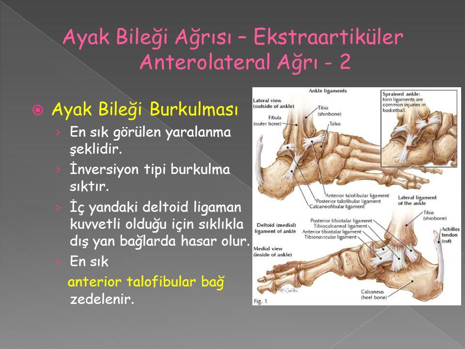 Ayak Bileği Ağrısı – Ekstraartiküler Anterolateral Ağrı - 2