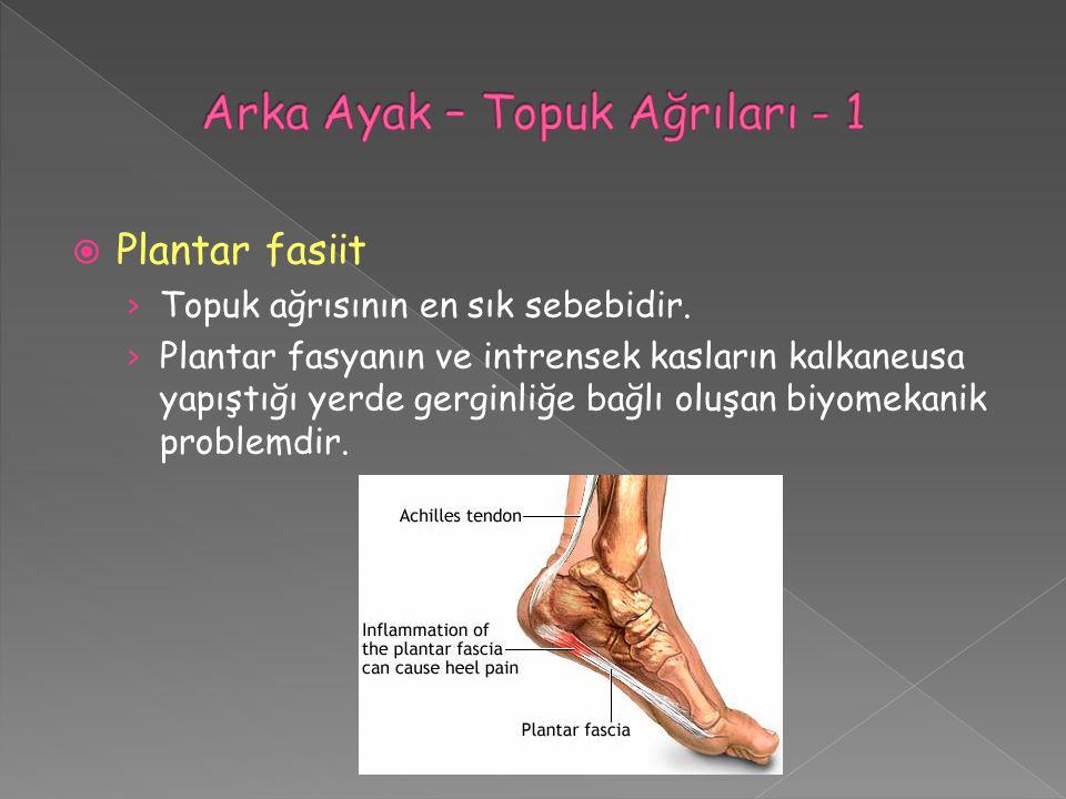 Arka Ayak – Topuk Ağrıları - 1
