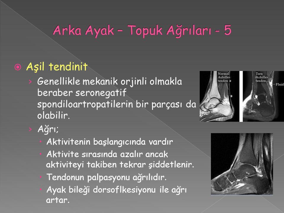 Arka Ayak – Topuk Ağrıları - 5