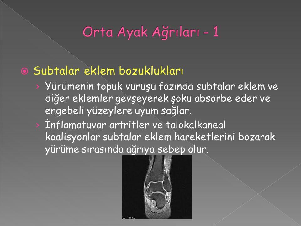 Orta Ayak Ağrıları - 1 Subtalar eklem bozuklukları