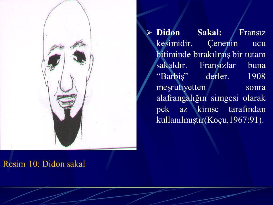 Didon Sakal: Fransız kesimidir