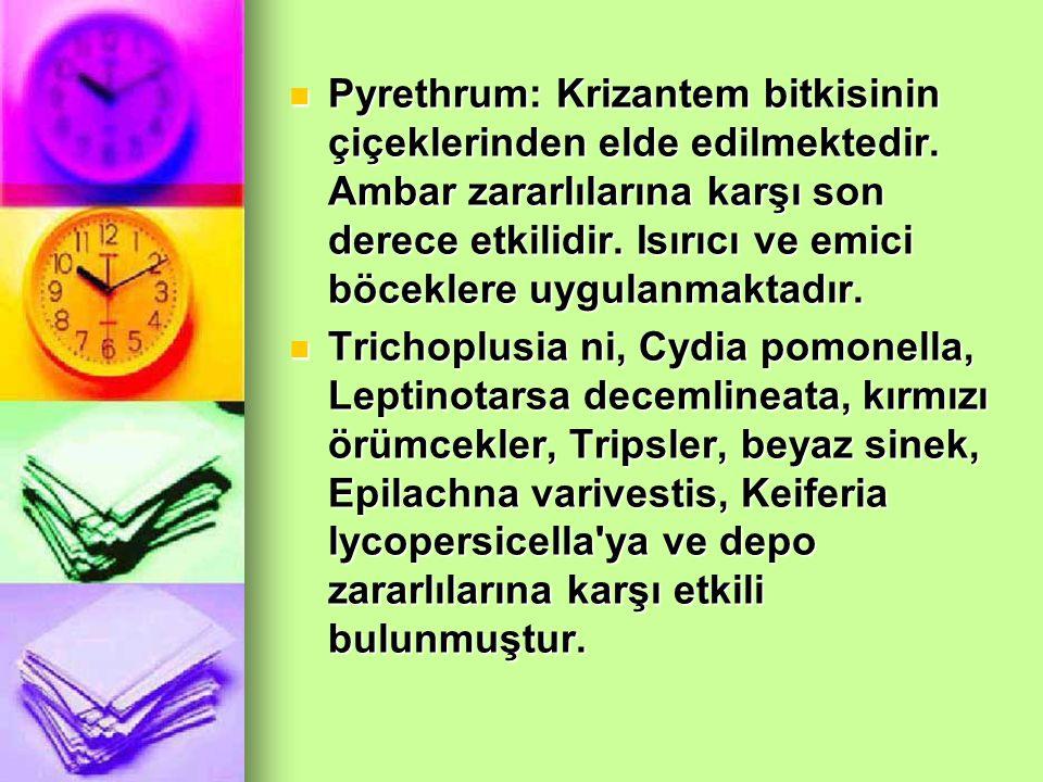 Pyrethrum: Krizantem bitkisinin çiçeklerinden elde edilmektedir
