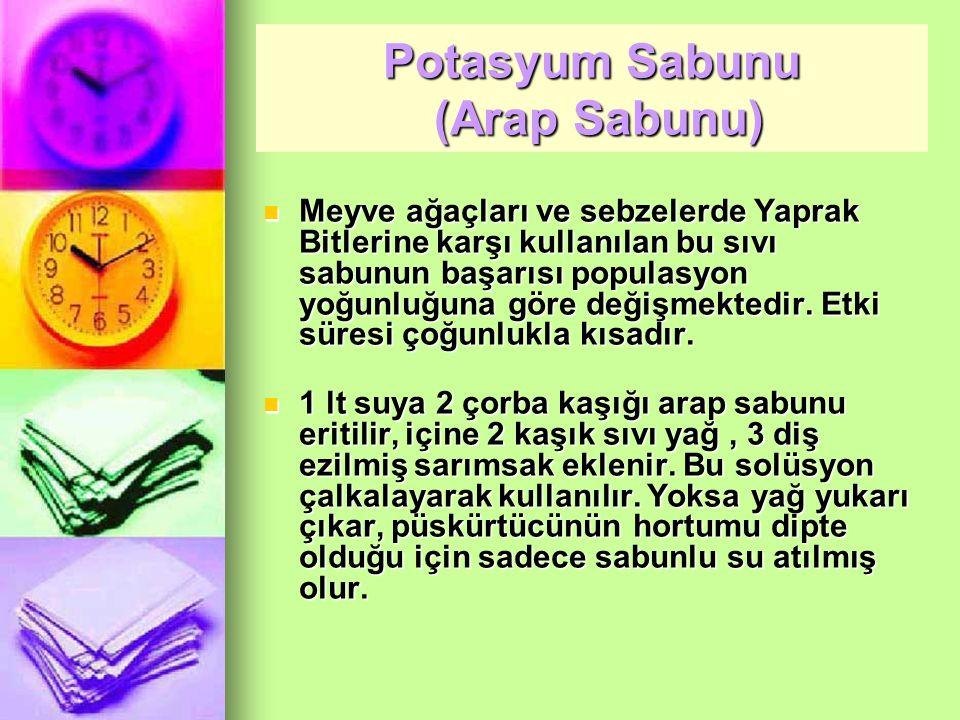 Potasyum Sabunu (Arap Sabunu)
