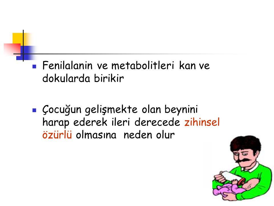Fenilalanin ve metabolitleri kan ve dokularda birikir