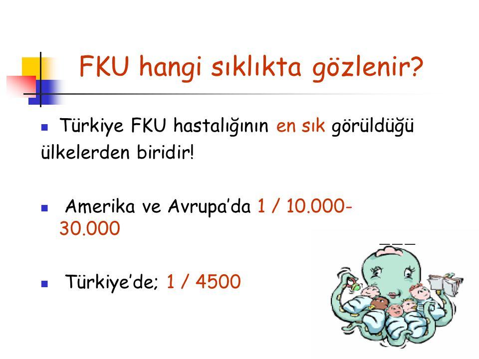 FKU hangi sıklıkta gözlenir Türkiye FKU hastalığının en sık görüldüğü