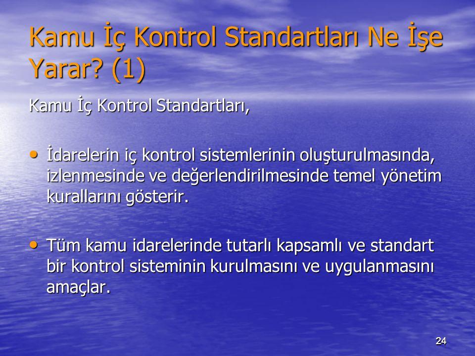 Kamu İç Kontrol Standartları Ne İşe Yarar (1)