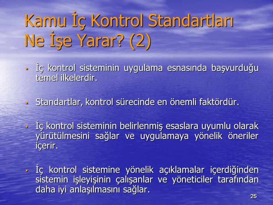 Kamu İç Kontrol Standartları Ne İşe Yarar (2)