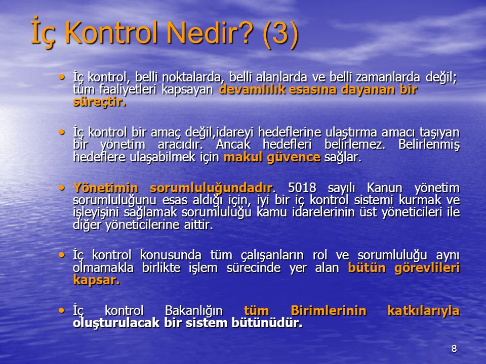 İç Kontrol Nedir (3)