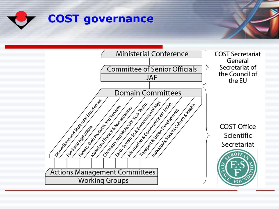 COST governance 4