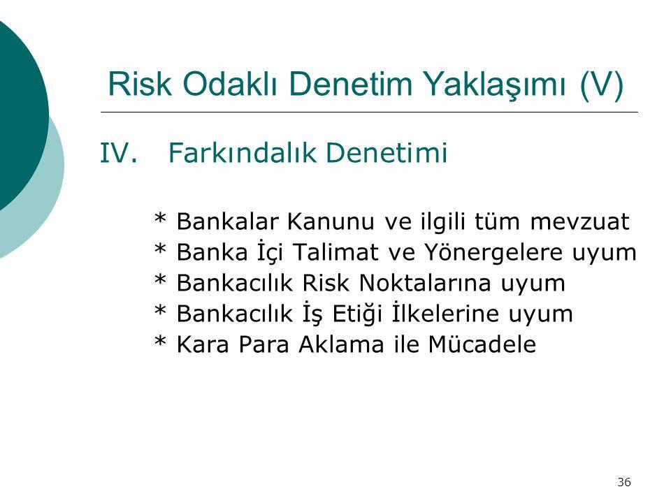 Risk Odaklı Denetim Yaklaşımı (V)