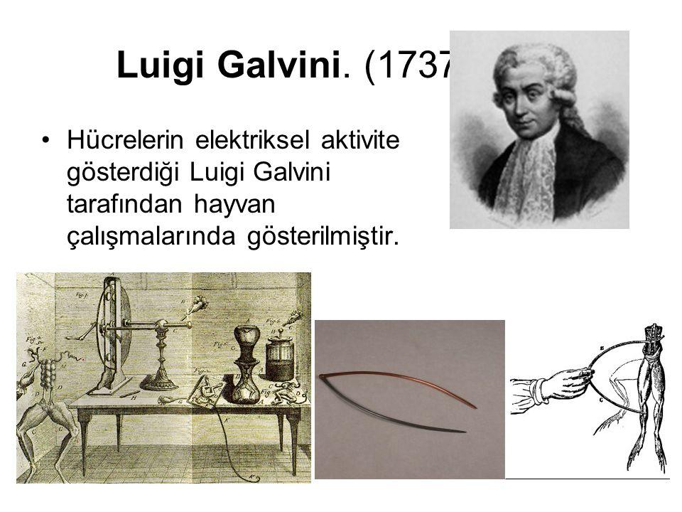 Luigi Galvini. (1737-1798) Hücrelerin elektriksel aktivite gösterdiği Luigi Galvini tarafından hayvan çalışmalarında gösterilmiştir.