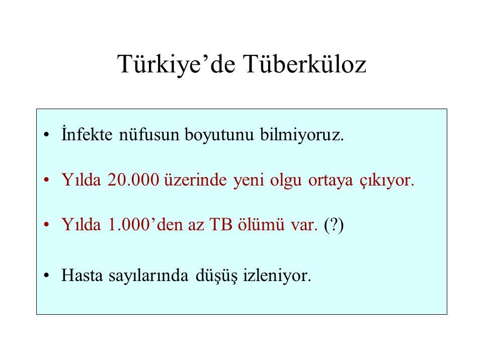 Türkiye'de Tüberküloz