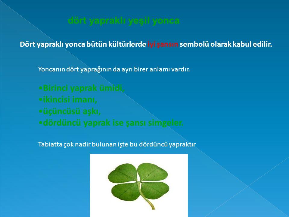 dört yapraklı yeşil yonca