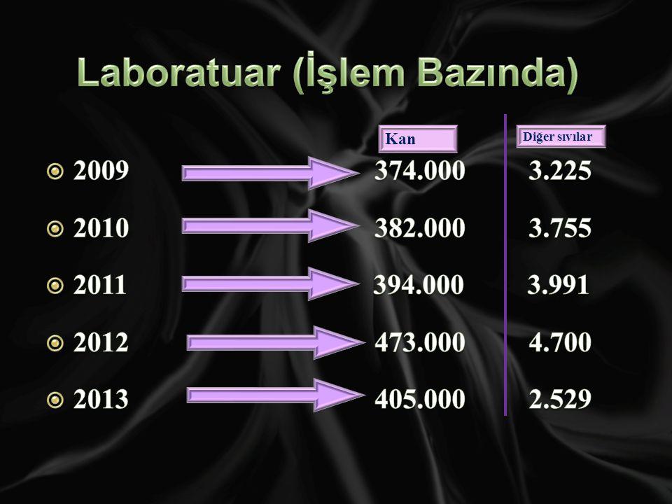 Laboratuar (İşlem Bazında)