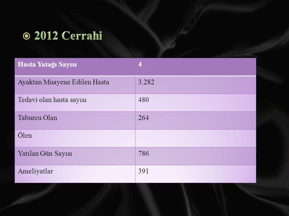2012 Cerrahi Hasta Yatağı Sayısı 4 Ayaktan Muayene Edilen Hasta 3.282