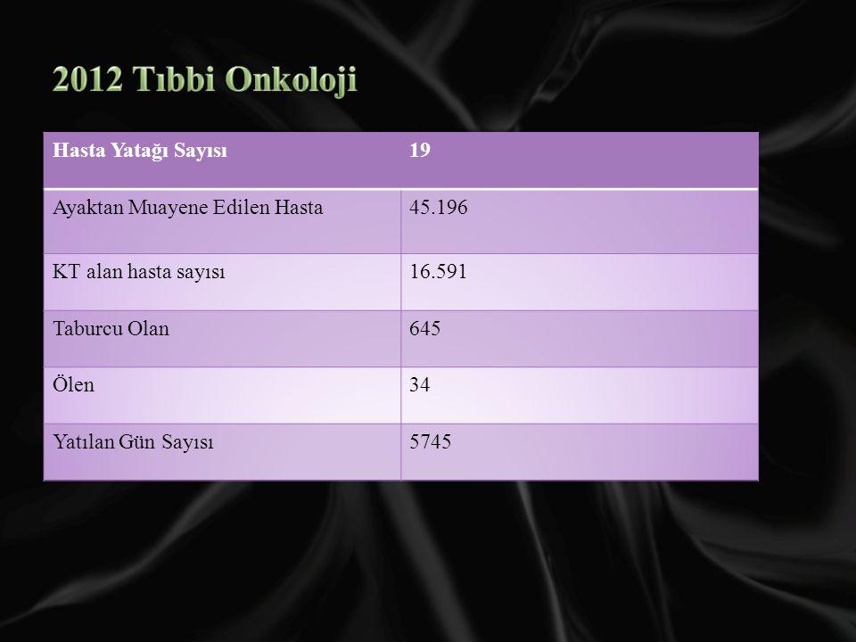 2012 Tıbbi Onkoloji Hasta Yatağı Sayısı 19
