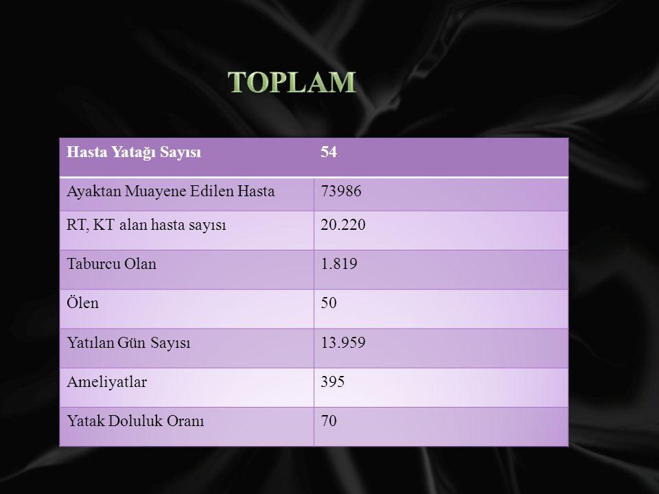 TOPLAM Hasta Yatağı Sayısı 54 Ayaktan Muayene Edilen Hasta 73986