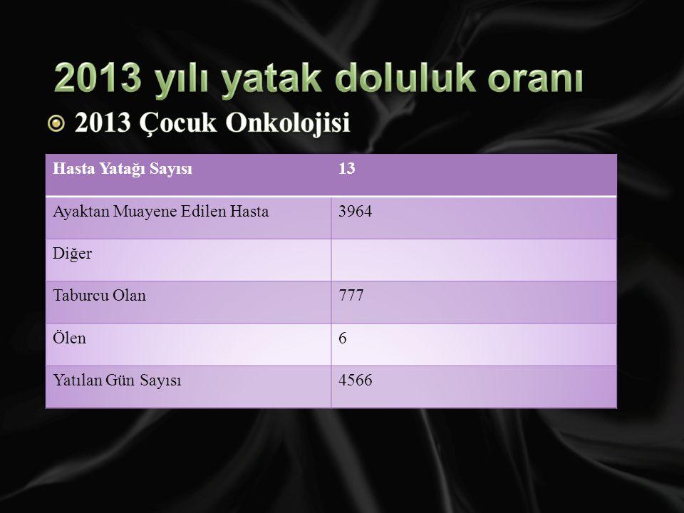 2013 yılı yatak doluluk oranı