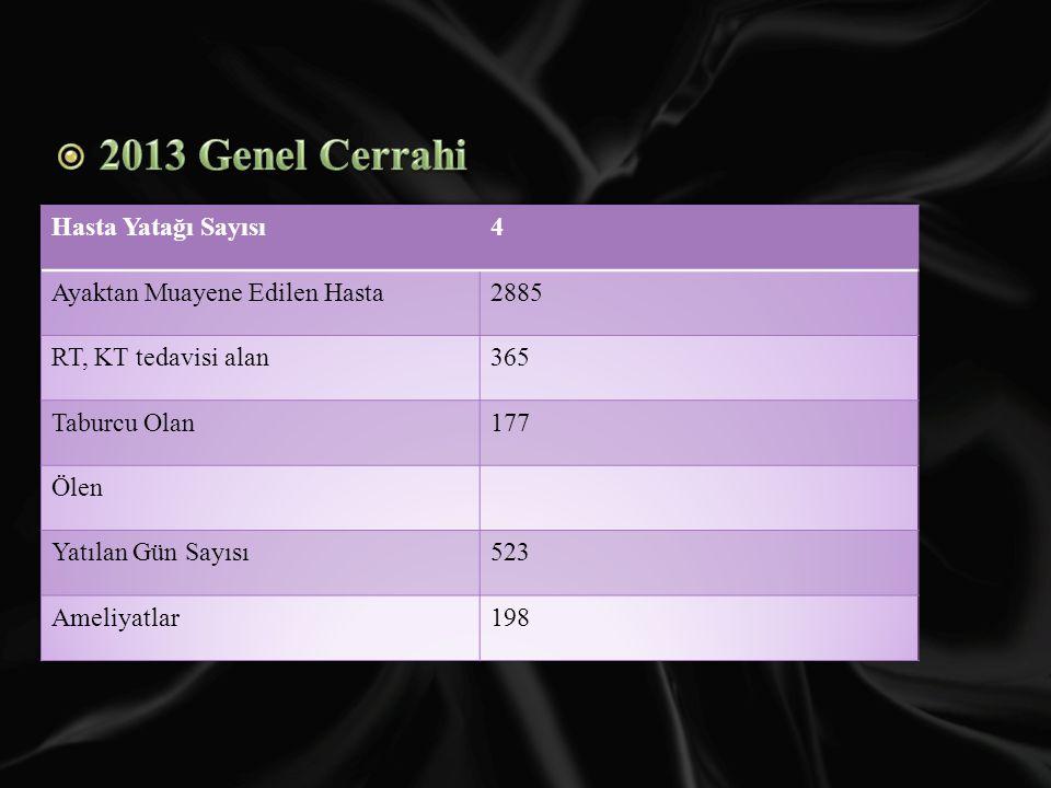 2013 Genel Cerrahi Hasta Yatağı Sayısı 4 Ayaktan Muayene Edilen Hasta