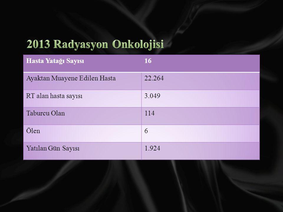 2013 Radyasyon Onkolojisi Hasta Yatağı Sayısı 16