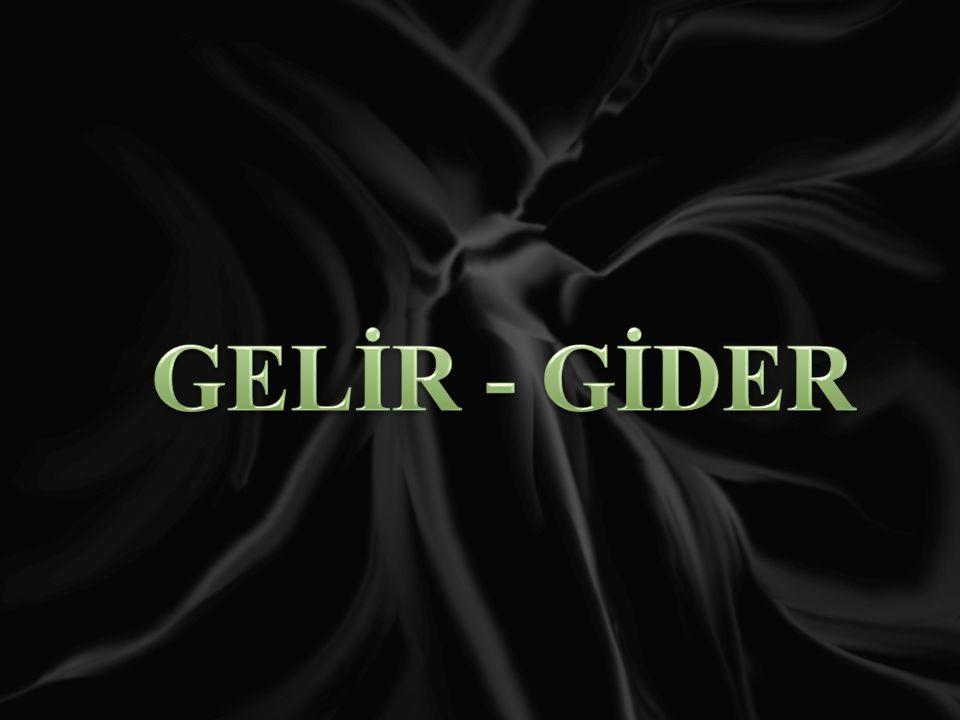 GELİR - GİDER