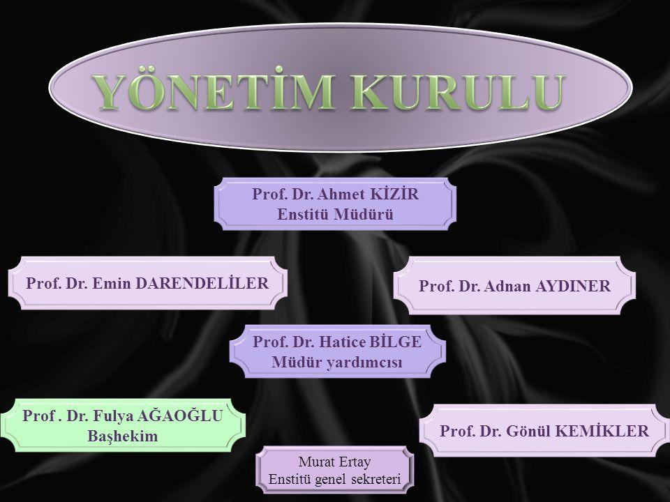Prof. Dr. Emin DARENDELİLER