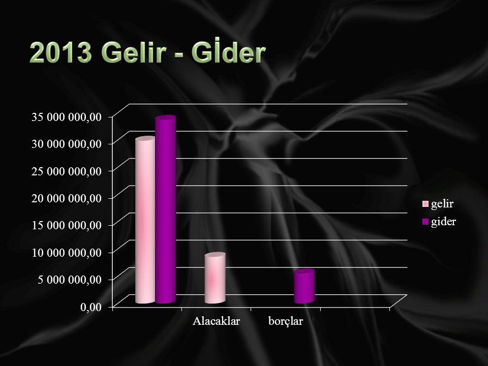 2013 Gelir - Gİder