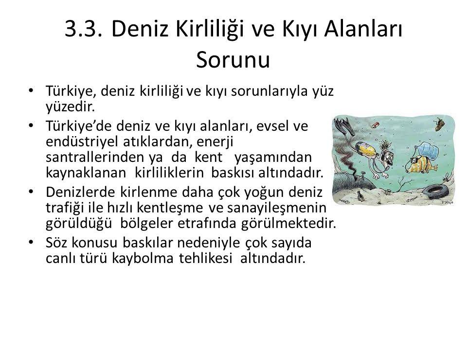 3.3. Deniz Kirliliği ve Kıyı Alanları Sorunu