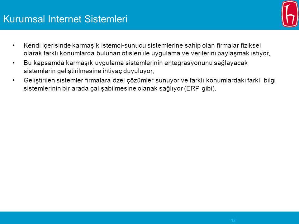 Kurumsal Internet Sistemleri