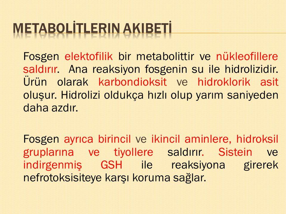 Metabolİtlerin akIbetİ