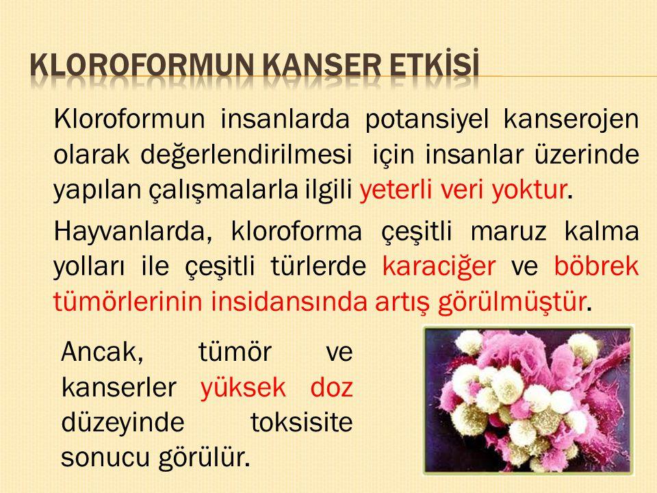 KLOROFORMUN KANSER ETKİSİ