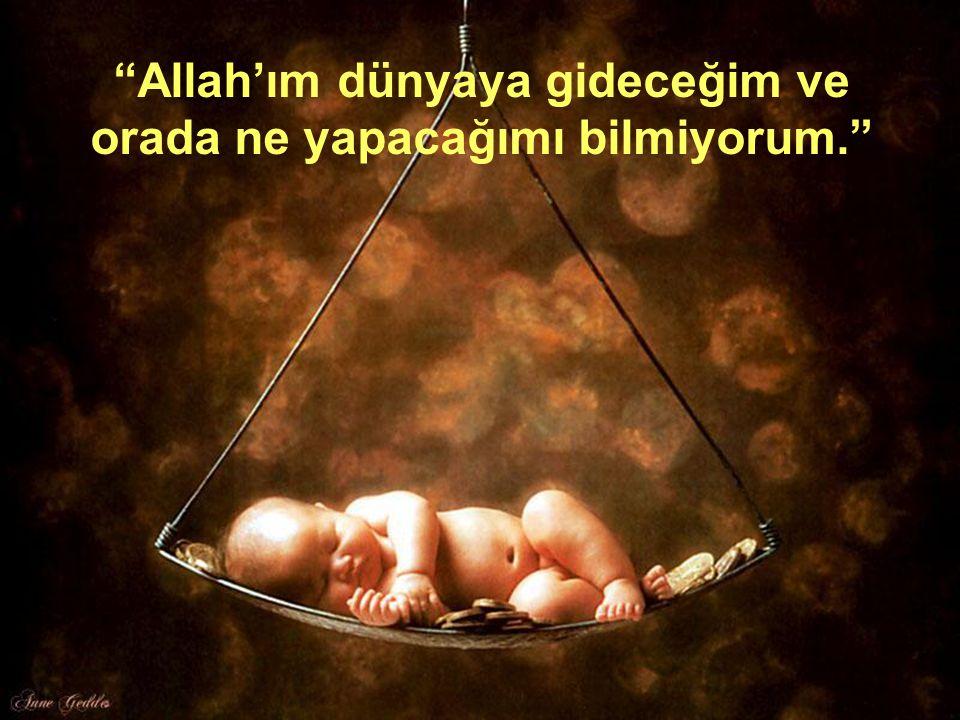 Allah'ım dünyaya gideceğim ve orada ne yapacağımı bilmiyorum.