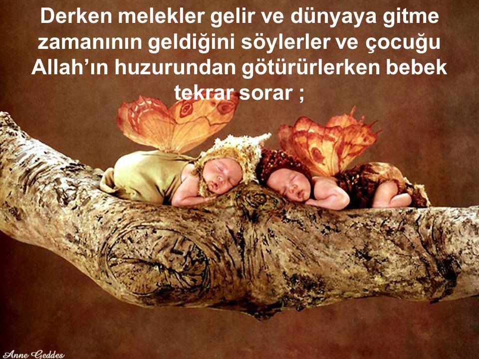 Derken melekler gelir ve dünyaya gitme zamanının geldiğini söylerler ve çocuğu Allah'ın huzurundan götürürlerken bebek tekrar sorar ;