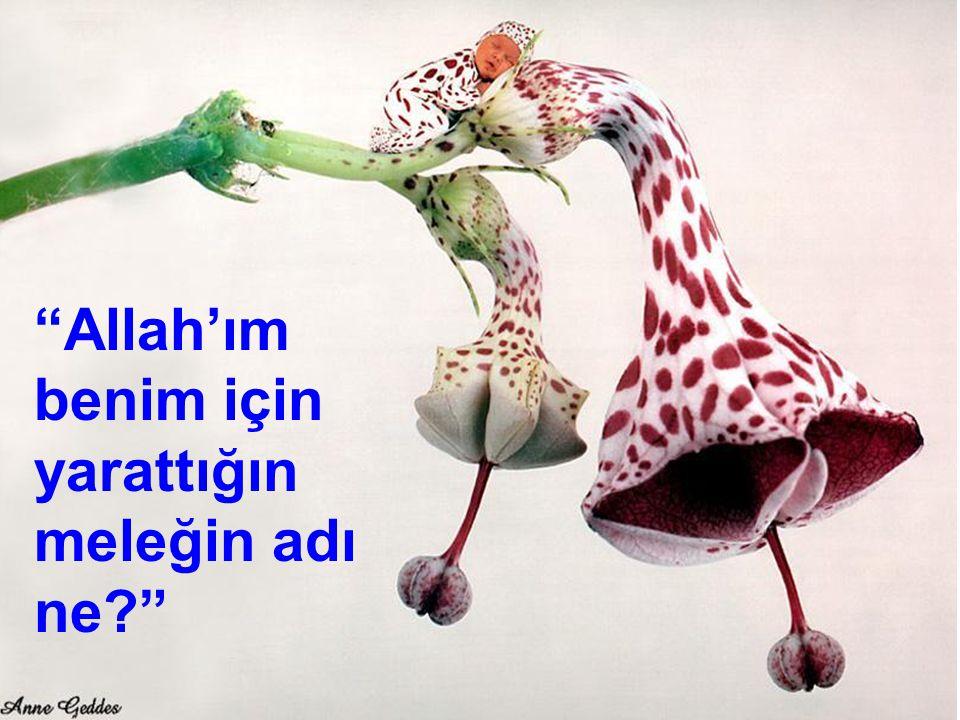 Allah'ım benim için yarattığın meleğin adı ne