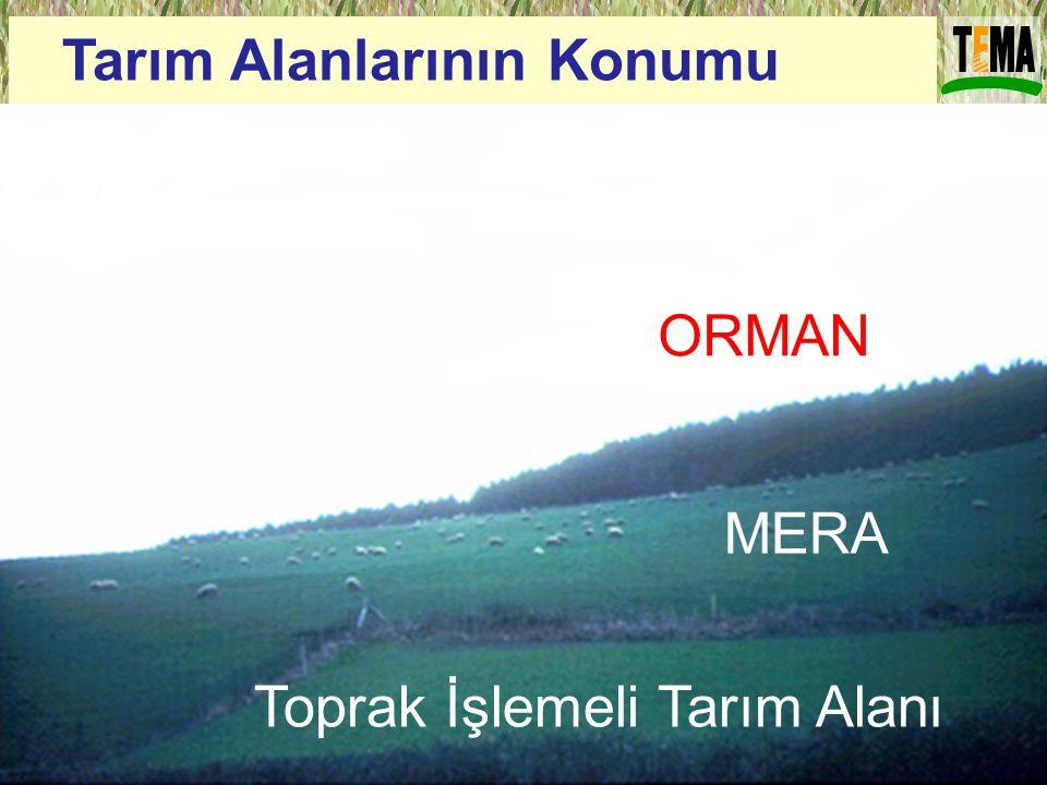 Tarım Alanlarının Konumu