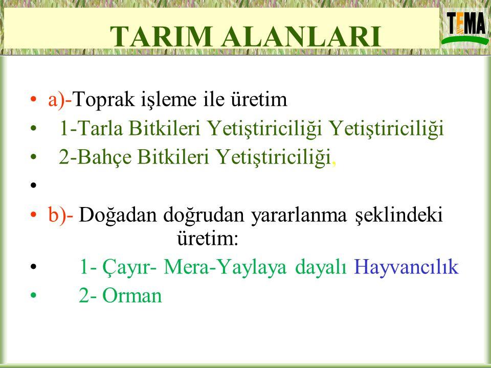 TARIM ALANLARI a)-Toprak işleme ile üretim