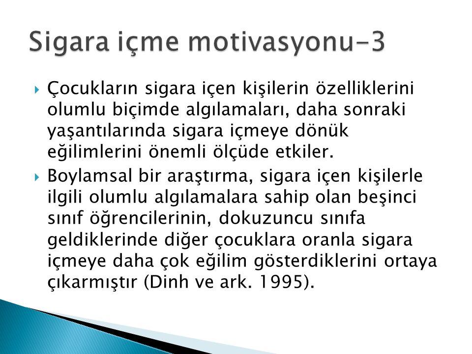 Sigara içme motivasyonu-3
