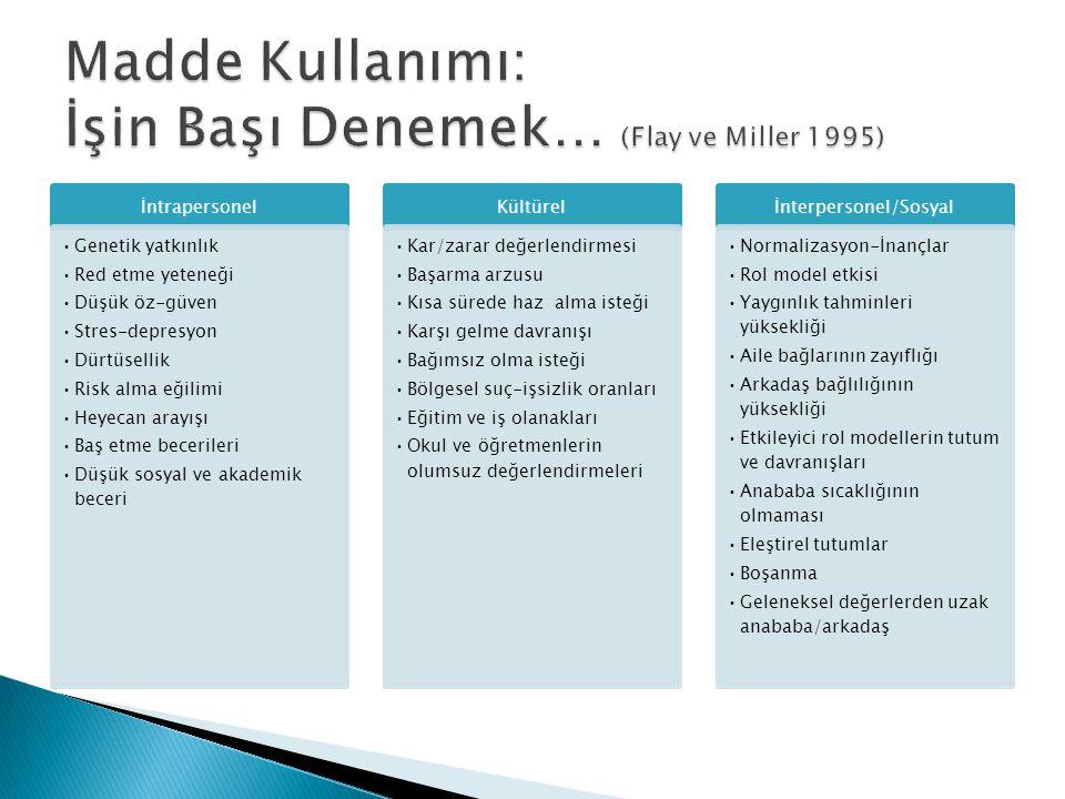 Madde Kullanımı: İşin Başı Denemek… (Flay ve Miller 1995)