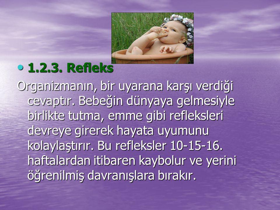1.2.3. Refleks